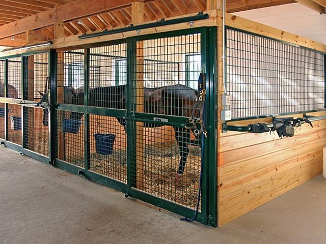 Денники для лошадей своими руками 558